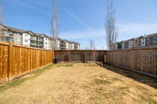 Photo 35: 16719 60 Street in Edmonton: Zone 03 House Half Duplex for sale : MLS®# E4240535