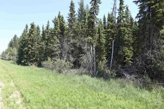 Photo 3: TWP 494 RR 42: Rural Leduc County Rural Land/Vacant Lot for sale : MLS®# E4252228