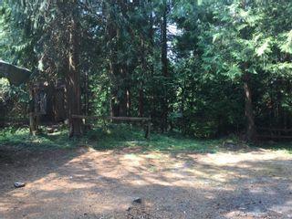 Photo 51: 2949 Rosalie Rd in : Na Cedar House for sale (Nanaimo)  : MLS®# 854892