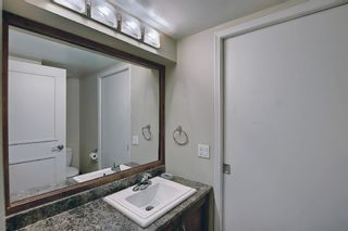 Photo 23: 117 Hawkford Court NW in Calgary: Hawkwood Detached for sale : MLS®# A1103676