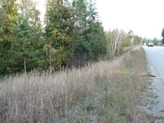 Photo 3: Lot 1 Trans Canada Hwy: Sorrento Land Only for sale (Shuswap)  : MLS®# 10171991
