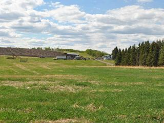 Photo 19: Range Road 41: Rural Mountain View County House for sale : MLS®# C3641299
