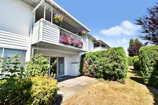 """Photo 26: 13 3055 TRAFALGAR Street in Abbotsford: Central Abbotsford Townhouse for sale in """"GLENVIEW MEADOWS"""" : MLS®# R2608637"""