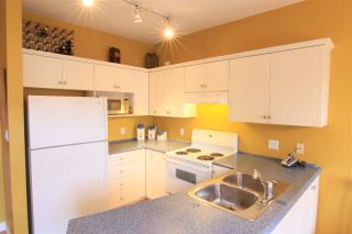 Photo 7: 171 PHILLIPS Street in New Westminster: Queensborough House for sale : MLS®# R2139033