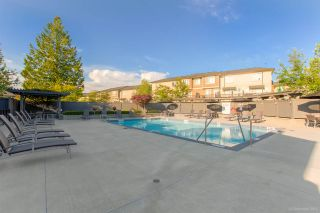"""Photo 16: 79 7848 209 Street in Langley: Willoughby Heights Townhouse for sale in """"MASON & GREEN"""" : MLS®# R2435109"""