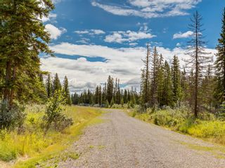 Photo 23: 20 34364 RANGE ROAD 42: Rural Mountain View County Land for sale : MLS®# A1017805