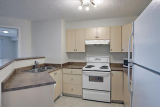 Photo 3: 4306 4975 130 Avenue SE in Calgary: McKenzie Towne Apartment for sale : MLS®# A1082092