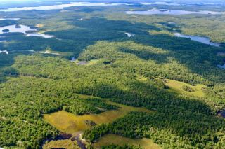 Photo 36: 16536 Rainy Lake in Fort Frances: Vacant Land for sale : MLS®# TB212374