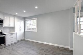 Photo 17: 3020 Dover Crescent SE in Calgary: Dover Semi Detached for sale : MLS®# A1147762