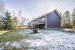 Photo 29: 62101 RR 421: Rural Bonnyville M.D. House for sale : MLS®# E4219844
