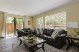 """Photo 15: 101 206 E 15TH Street in North Vancouver: Central Lonsdale Condo for sale in """"Lions Gate Manor"""" : MLS®# R2569602"""