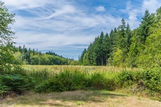 Photo 55: 3480 Arrowsmith Rd in : Na Uplands House for sale (Nanaimo)  : MLS®# 863117