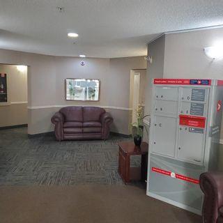 Photo 32: 2207 11214 80 Street in Edmonton: Zone 09 Condo for sale : MLS®# E4257884