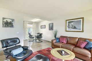 Photo 6: 108 Fallswater Road NE in Calgary: Falconridge Detached for sale : MLS®# A1133695