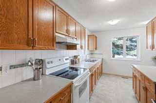 Photo 4: 427 34 Avenue NE in Calgary: Highland Park Detached for sale : MLS®# A1145247