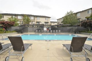 """Photo 13: 88 7938 209 Street in Langley: Willoughby Heights Townhouse for sale in """"Red Maple Park"""" : MLS®# R2404765"""