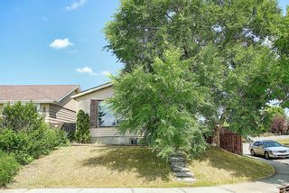 Photo 3: 51 Erin Park Close SE in Calgary: Erin Woods Detached for sale : MLS®# A1138830