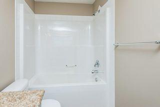 Photo 36: 3814 Allan Drive in Edmonton: Zone 56 Attached Home for sale : MLS®# E4255416