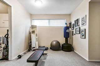 Photo 17: 4536 19 Avenue NW in Calgary: Montgomery Detached for sale : MLS®# A1118171