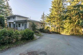 Photo 4: 6120 BROWN Road in Abbotsford: Sumas Mountain House for sale : MLS®# R2542889