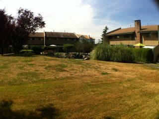 "Photo 17: 24 5850 177B Street in Surrey: Cloverdale BC Townhouse for sale in ""Dogwood Gardens"" (Cloverdale)  : MLS®# F1222363"