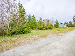 Photo 3: 1154 Fourth Ave in : PA Salmon Beach Land for sale (Port Alberni)  : MLS®# 871795