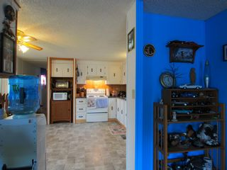 Photo 15: 617 Mobile Street: House for sale : MLS®# 1814232