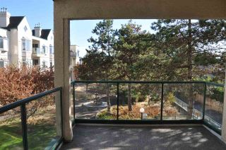 """Photo 12: 217 7633 ST. ALBANS Road in Richmond: Brighouse South Condo for sale in """"St. Albans Court"""" : MLS®# R2177988"""