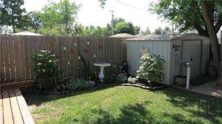 Photo 15: 462 Neil Avenue in Winnipeg: Residential for sale (3D)  : MLS®# 1820929