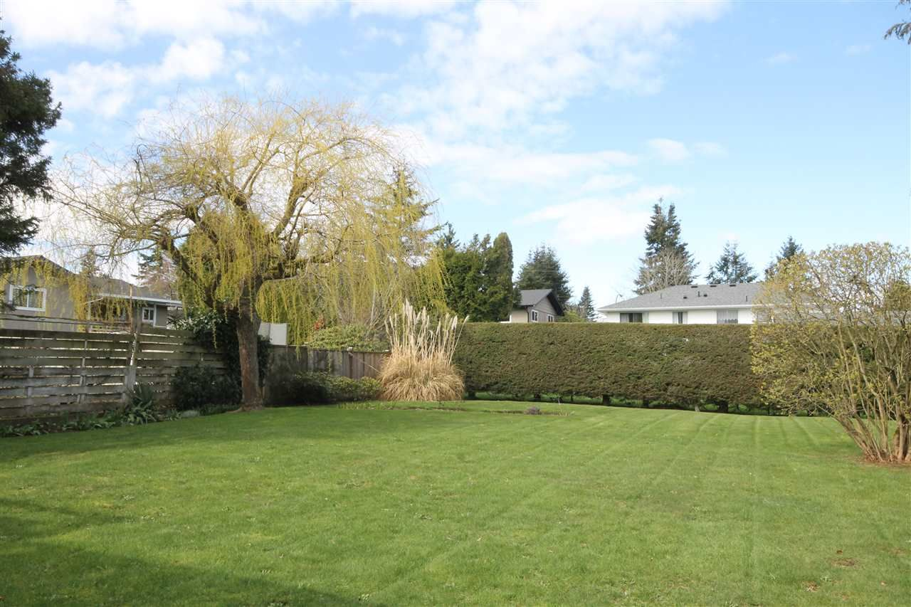 """Photo 11: Photos: 15681 GOGGS Avenue: White Rock House for sale in """"White Rock"""" (South Surrey White Rock)  : MLS®# R2151652"""