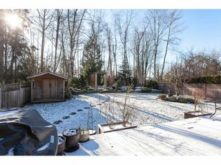 "Photo 17: 10635 CHESTNUT Place in Surrey: Fraser Heights House for sale in ""Glenwood"" (North Surrey)  : MLS®# R2338110"