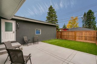 Photo 32: 11 Brown Crescent NW in Calgary: Brentwood Detached for sale : MLS®# A1062319