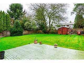 Photo 19: 4932 208A Street in Langley: Langley City House for sale : MLS®# F1436177