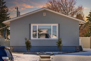 Photo 45: 1027 Penrith Crescent SE in Calgary: Penbrooke Meadows Detached for sale : MLS®# A1104837