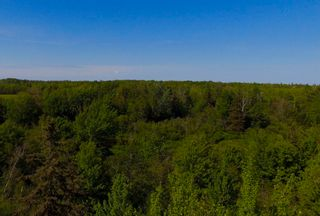 Photo 12: River John Road in Sundridge: 108-Rural Pictou County Vacant Land for sale (Northern Region)  : MLS®# 202115166