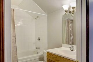 Photo 33: 155 CHAPALINA Mews SE in Calgary: Chaparral Detached for sale : MLS®# C4247438