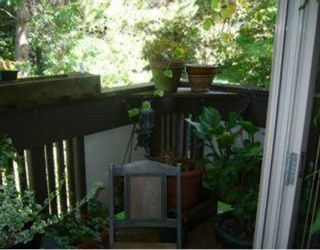 """Photo 9: 5 5575 OAK Street in Vancouver: Shaughnessy Condo for sale in """"SHAWNOAKS"""" (Vancouver West)  : MLS®# V751439"""