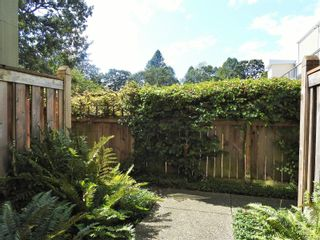 Photo 43: 216 663 Goldstream Ave in : La Fairway Condo for sale (Langford)  : MLS®# 851986