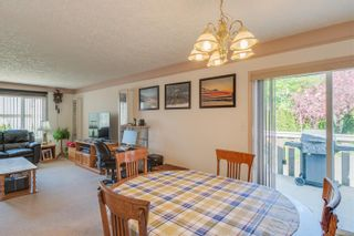 Photo 13: 629 Judah St in : SW Glanford House for sale (Saanich West)  : MLS®# 874110