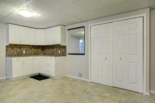 Photo 24: 66 Elk Hill SE: Airdrie Detached for sale : MLS®# A1049036