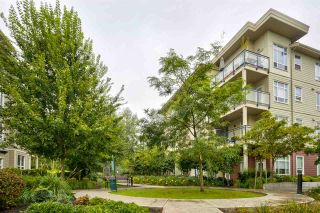 Photo 22: C214 20211 66 Avenue in Langley: Willoughby Heights Condo for sale : MLS®# R2498961