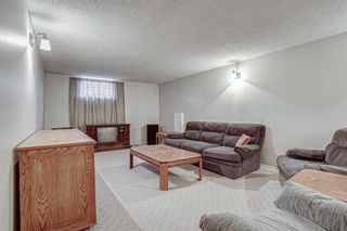 Photo 24: 2427 23 Street NW in Calgary: Banff Trail Detached for sale : MLS®# A1025508