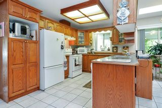 Photo 9: 3771 224 Street in Langley: Campbell Valley House for sale : MLS®# R2590280
