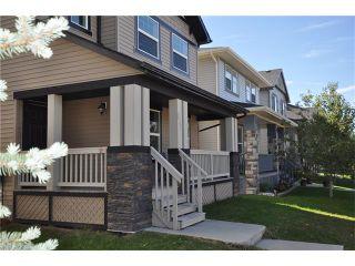 Photo 21: 269 SILVERADO Way SW in Calgary: Silverado House for sale : MLS®# C4082092