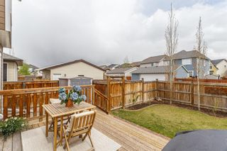 Photo 26: 25 BRIGHTONCREST Rise SE in Calgary: New Brighton Detached for sale : MLS®# A1110140