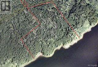 Photo 2: - Thorpe Road in Letang: Vacant Land for sale : MLS®# NB057578