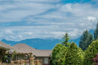 """Photo 37: 176 46000 THOMAS Road in Chilliwack: Vedder S Watson-Promontory Townhouse for sale in """"Halcyon Meadows"""" (Sardis)  : MLS®# R2460859"""