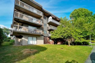 """Photo 31: 206 330 W 2ND Street in North Vancouver: Lower Lonsdale Condo for sale in """"LORRAINE PLACE"""" : MLS®# R2604160"""