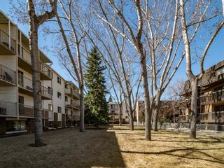 Main Photo: 213 3420 50 Street NW in Calgary: Varsity Apartment for sale : MLS®# A1095865