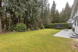 Photo 35: 19890 41 Avenue in Langley: Brookswood Langley House for sale : MLS®# R2537618